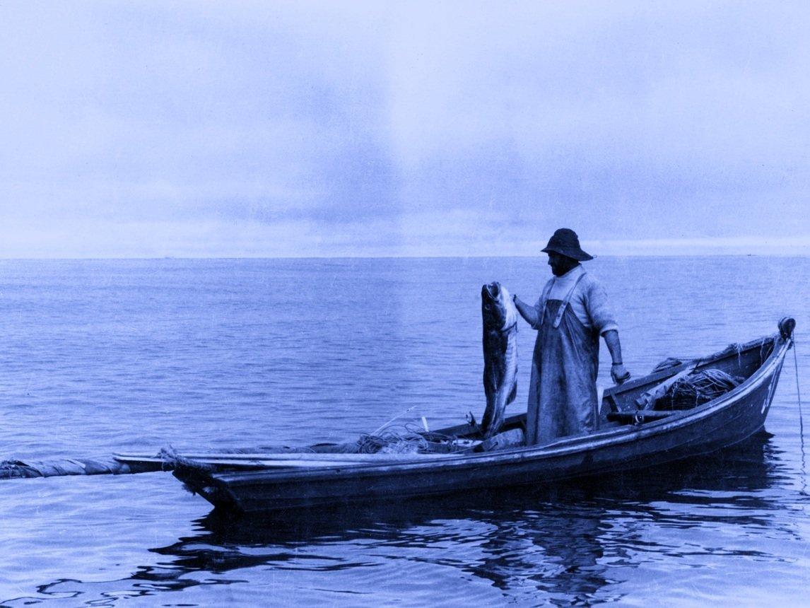 Man fishing cod from a boat