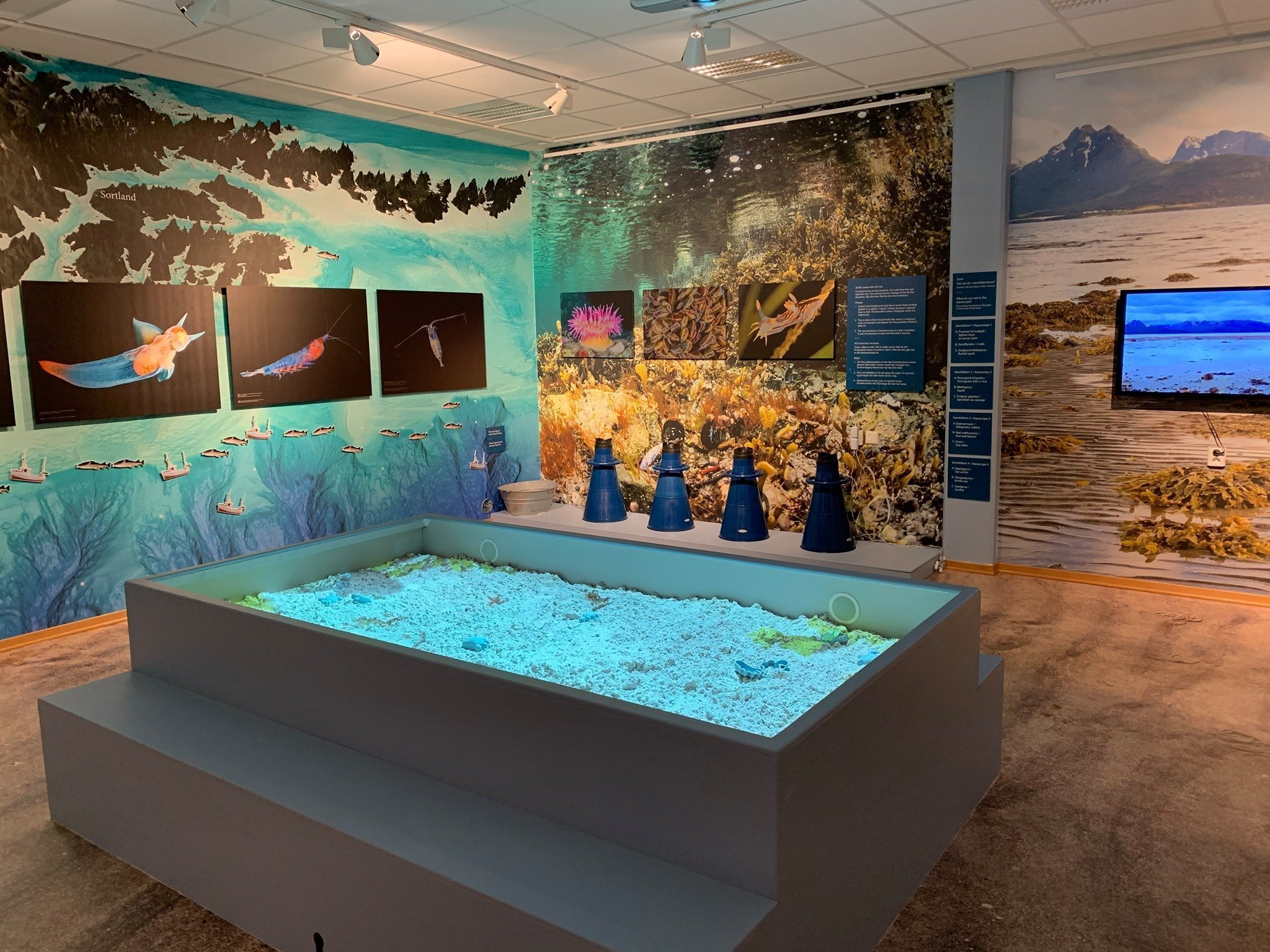 Seabed exhibition